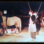 Circo-Bidone-with horse in the rig