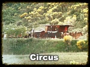 Circus-image-link Circus Bidone