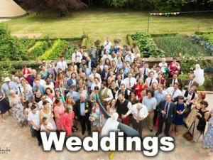 Giant Seagull at Wedding Photo