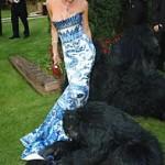 Gorilla with Victoria Beckham