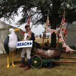 Seagull and Beach